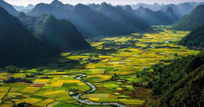 Teach in Vietnam